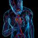 La depresió i l'ansietat augmenten en un 30% el risc cardiovascular