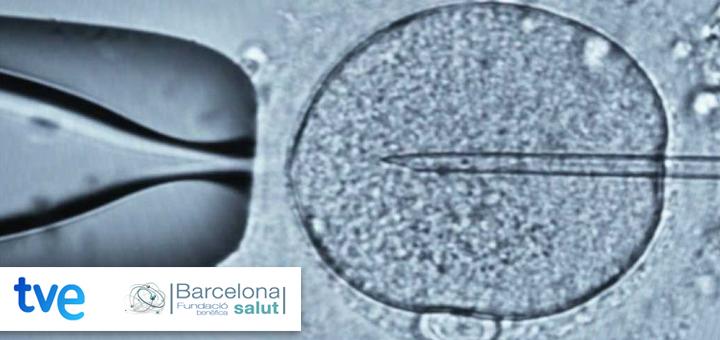 La Ciencia de la Salud – Fecundación in vitro