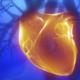 Un hombre en parada cardíaca salva la vida en Salt gracias a un desfibrilador cedido por la Fundación Barcelona Salut